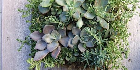 Vertical Gardening Workshop - Sunday, Oct 4th tickets