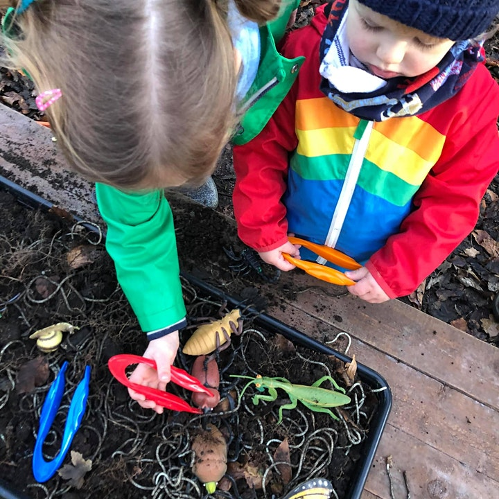 Saplings Forest School at Wilderness Adventures image