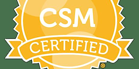 Certified ScrumMaster (CSM), Virtual-Online 9-12 November 2020 tickets