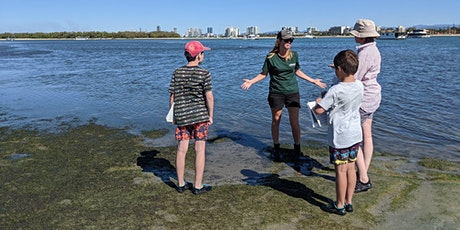 NaturallyGC Seagrass of the Broadwater tickets