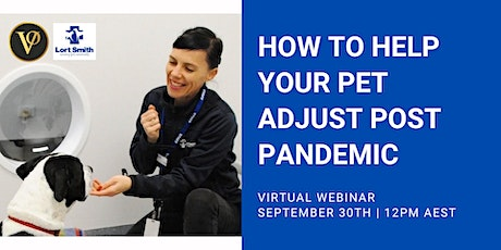 BRING YOUR PET TO ZOOM DAY | How To Help Your Pet Adjust Post Pandemic tickets