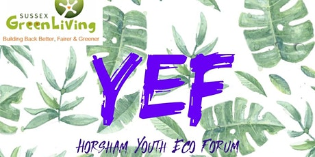 Horsham Youth Eco Forum every Wednesday 7pm using Zoom tickets