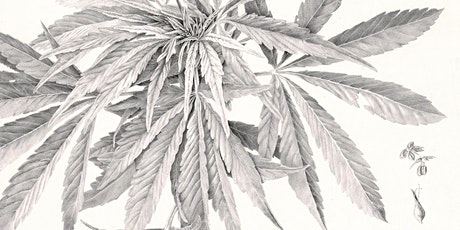 Botanical Art: A Continuing Tradition tickets