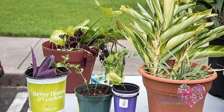 Plant Swap and Small Business Event tickets