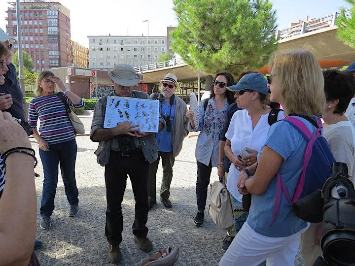 Imagen de LEER DETALLES Paseos de naturaleza guiados por biologo en Madrid