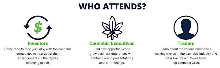 Virtual Benzinga Cannabis Capital Conference image