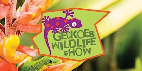 GECKOS WILDLIFE VISIT tickets