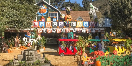 Morning October Pumpkin Patch (9am - 1pm) tickets