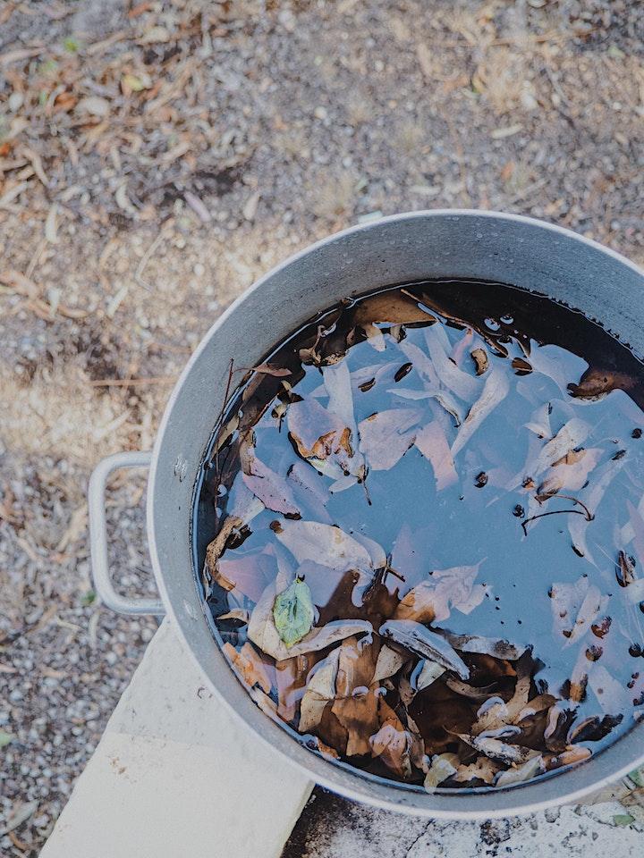 Natural Dying Workshop image