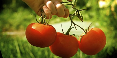 Organic Garden Insect and Pest Control tickets