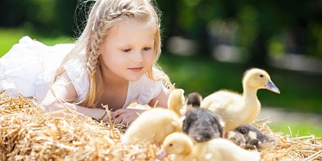 Cuddly Animal Farm Experience tickets