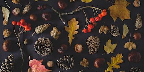 Plimoth Workshops: Fall Wreath Making tickets