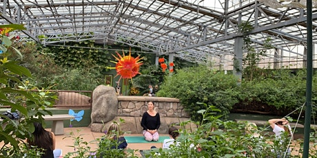 Family Yoga at Butterfly Wonderland in the Rain Forest tickets