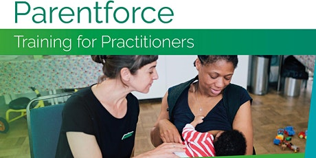 Parentforce for Practitioners - pre-live support tickets