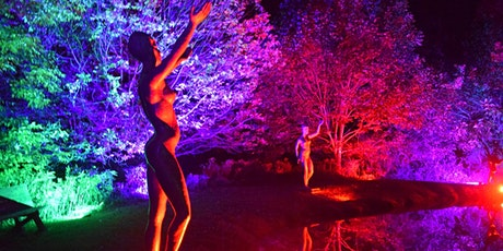NIGHT LIGHTS at Griffis Sculpture Park 2020 tickets