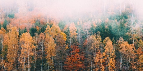 Treasuring the Sacred Pause-Autumnal Equinox tickets