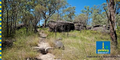 Bush Buddies- Biodiversity walk on the Rocks Track tickets