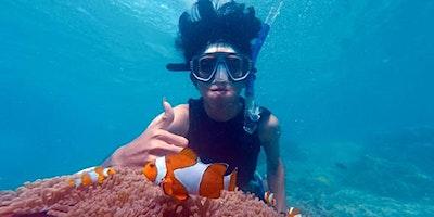 Sea Creature Glitter Globe – October School Holidays – Kids Event