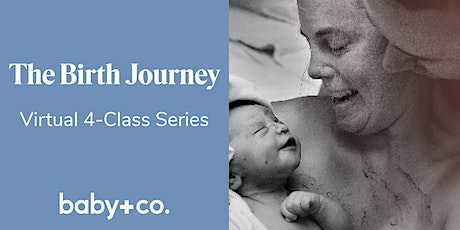 Birth Journey Childbirth + Early Parenting 4-Wk Virtual Class 11/3-11/24