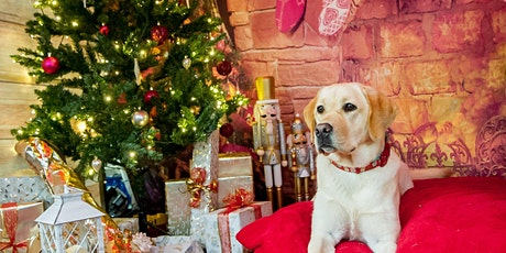 Santa Paws Grotto Experience tickets