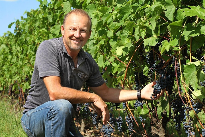 Image de ANNULÉE - Journée de vendanges au Vignoble Rivière du Chêne