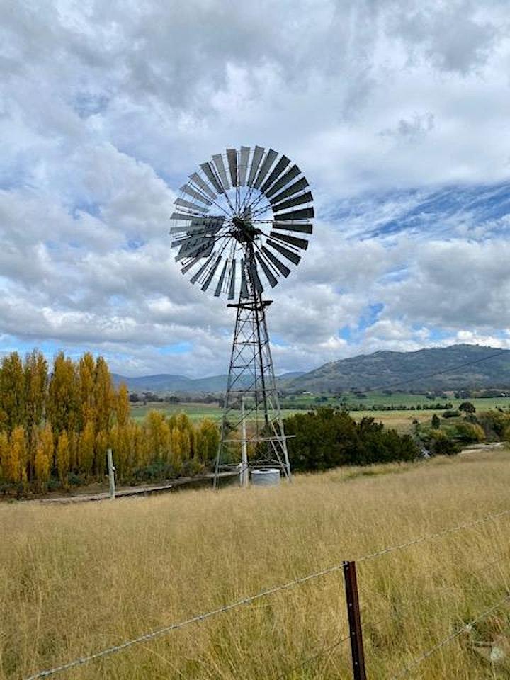 Beyond The Farm Gate at Lanyon Homestead image