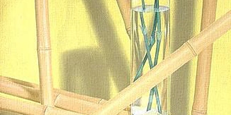 Trompe L'oeil - The Art of Illusion,  Thurs., Oct 1 - Nov 5, 4-6pm