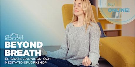 Beyond Breath - En Introduktion till Happiness-Programmet (Malmö) biljetter