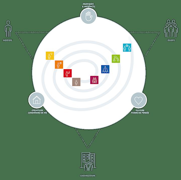Image pour Comprendre l'évolution des organisations - modèle : Valeurs Dynamiques