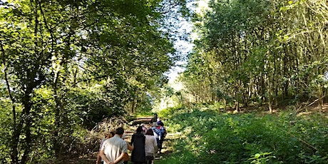 Heritage Open Days – guided walk around Sinai Park Woodlands and House tickets