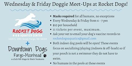 Weekly Indoor Doggie Meet-Ups at Rocket Dogs tickets