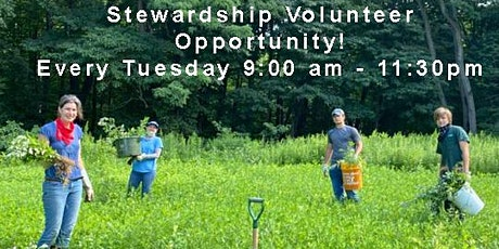 Rockefeller Stewardship Volunteer, every Tuesday 9:00am to 11:30am tickets