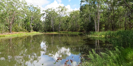 Bush Explorers 'Spring into Nature' - Nature walk - Noorumba Reserve tickets