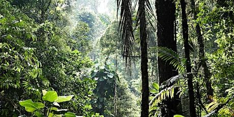 Finanzen For Future - Biodiversität als Lebensversicherung der Menschheit Tickets