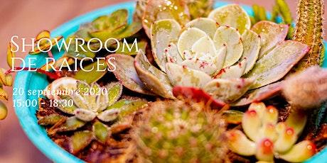 Primer Showroom Raíces entradas