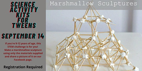 Science Activty Kits for Tweens: Marshmallow Sculptures tickets