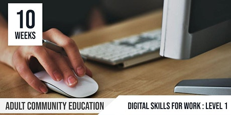 Digital Skills for Work Level 1: Adult Community Education  |10 Week course