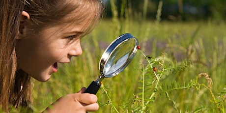 Kids' Spring School Holiday Event: Plants and Bugs Science Show - Online tickets