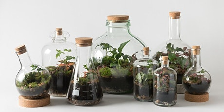 Terrarium Workshops tickets