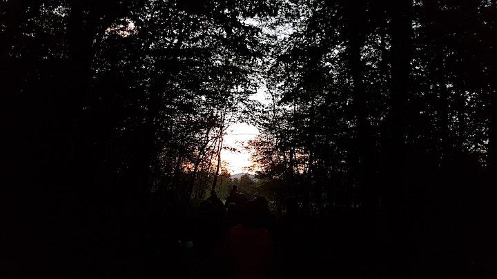Immagine Escursione - Quelli della notte (nel Parco RTO)