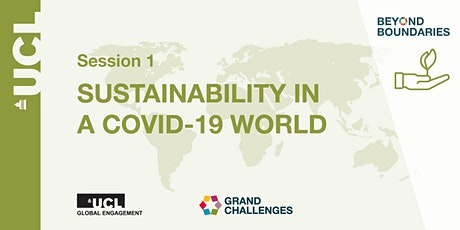 Beyond Boundaries Session 1: Sustainability in a COVID-19 world tickets