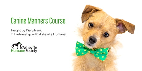 Canine Manners Course tickets