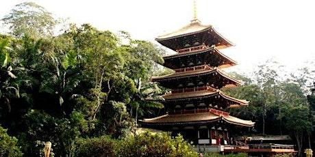 10/10 Torre de Miroku com visita monitorada ingressos
