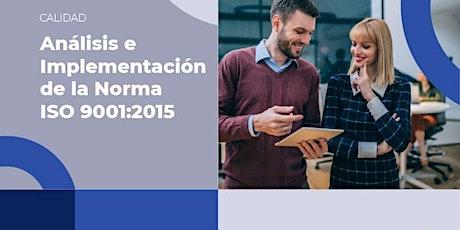 Curso Online Análisis e Implementación de la Norma ISO 9001:2015 entradas