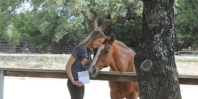 Retreat  at the Ranch: Mindfulness and Empowerment Workshop