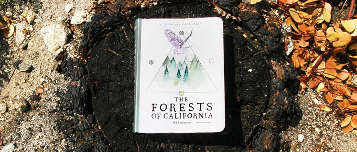 Walk with Obi: Burned Forests of the Sierra image