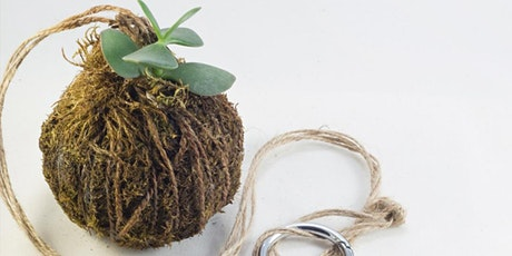 Kids' Spring School Holiday Event: Kokedama Workshop - Online tickets
