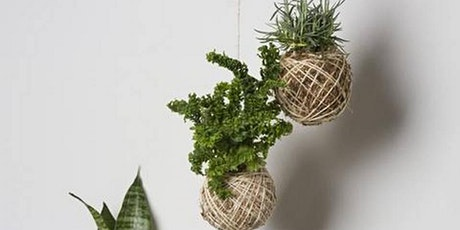 Kokedama Making for Kids tickets