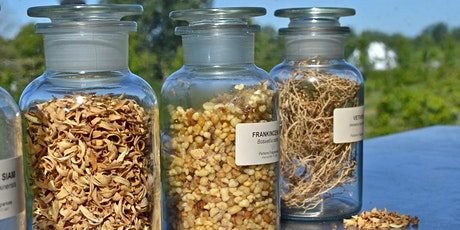 Introduction To Perfume & Botanical Extracts – Experience tickets