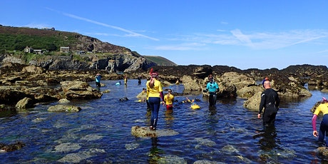Snorkel over the rockpools tickets